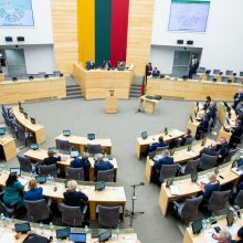 Seimas linkęs susieti savivaldos įmonių paramos dydį su uždirbtu pelnu