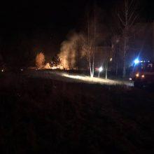 Praėjusią parą vėl siautėjo padegėjai: išdegė beveik 165 ha žolės