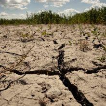 Lietaus šalyje nepakanka – hidrologinė sausra tęsiasi