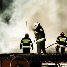 Per praėjusias dvi paras gesinti 45 gaisrai: žuvo vienas žmogus