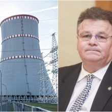 L. Linkevičius: dėl Astravo AE reikia dirbti ir su Baltarusija