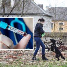 Koronavirusu užsikrėtusi moteris šokiravo požiūriu į izoliaciją: ramiai vedžiojo šunį