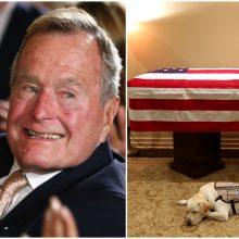 Atsisveikinimas su anapilin iškeliavusiu Dž. H. W. Bušu: šuo budėjo prie karsto