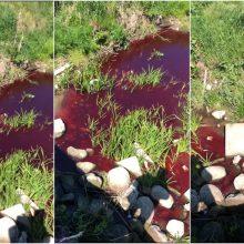 Dėl upelio – detektyvas: palangiškiai aiktelėjo pamatę tekantį raudoną vandenį