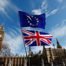 """Britų parlamentas balsuos dėl """"Brexit"""" alternatyvų. Kokios jos?"""