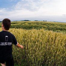 ŽŪM: jaunųjų ūkininkų įsikūrimui – papildomi 1,87 mln. eurų