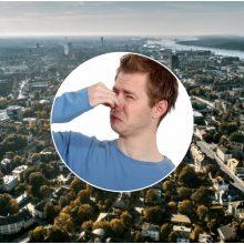 Klaipėdiečiai niršta: mieste – vėl smarvė