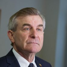 V. Pranckietis: turime garbę būti ir vadintis lietuvių tauta, nes anuomet iškentėjome