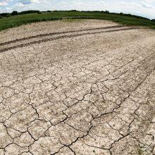 Lietus negelbsti: meteorologai skelbia stichinę sausrą