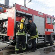 Klaipėdos rajone gelbėtojai vadavo vamzdyje įstrigusią mažametę mergaitę