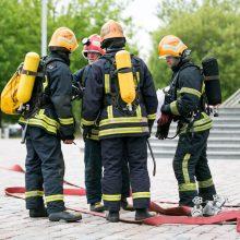 Ugniagesiams pajūryje – užimtos dienos: gelbėjo žmones ir gyvūnus