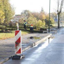 Supuvę medžiai Klaipėdoje – kliūtis remonto darbams