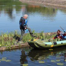 Tvenkinyje prie Jono kalnelio atsodino dirbtinės salos augaliją