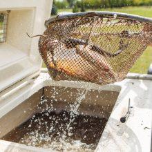 Seimas pritarė prezidento veto dėl žuvininkystės