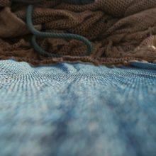 Kupiškio mariose tinklais žvejoję brakonieriai turės atlyginti 2,6 tūkst. eurų žalą gamtai