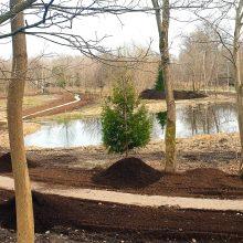 Dangės senvagės teritorijoje pradedamas kurti Rytų sodas