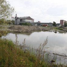 Sakurų parkas laukia darbų starto