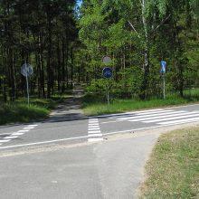 Klaipėdos politikams remonto terminai Smiltynėje sukėlė klausimų