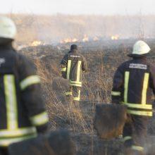 Daugiausia gaisrų – Klaipėdos rajone