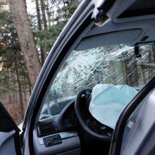 Šilutės rajone nuo policijos bėgęs neblaivus vairuotojas atsitrenkė į medį