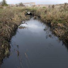 Klaipėdoje iš vamzdžio pliaupia užterštas vanduo: įmonė leidžia nevalytas nuotekas?