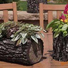 Rinkitės atitinkamus vazonus