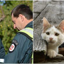 Kuriozinė situacija su katinu: pareigūnai nuramino senjorės nerimą dėl anūkių saugumo