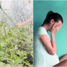 Airijoje gyvenančią lietuvę atleido dėl nėštumo: privalės išmokėti kompensaciją