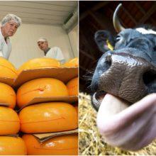 JAV didina muitus ES produktams: poveikį jau jaučia ir Lietuvos pienininkai