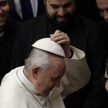 Popiežius rudenį vyks į Mozambiką, Madagaskarą ir Mauricijų