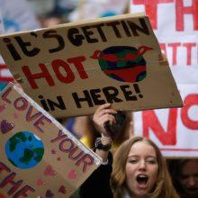 """Airija paskelbė klimato """"nepaprastąją padėtį"""""""