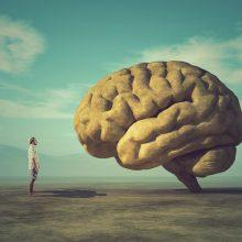 Kas nutinka jūsų smegenyse, kai pasiduodate?