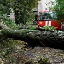 Dėl vėjo virto medžiai, tūkstančiams žmonių sutriko elektros tiekimas