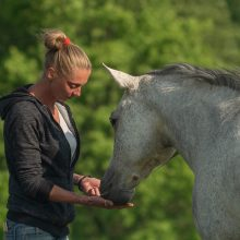 Prieglobstis: pasak O.Choroškovos, slėnyje apsigyvena tie arkliai, kurie neturi jokių galimybių susirasti naujus namus ar pagyti.
