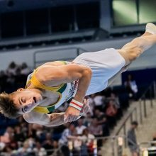 Gimnastas R.Tvorogalas į Europos žaidynių finalą žengė trečiu rezultatu
