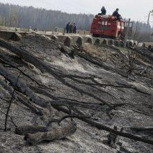 Ukrainiečių ugniagesiai užgesino atviras gaisro Černobylio zonoje liepsnas