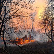 Černobylio teritorijoje užsiliepsnojęs miškų gaisras gesinamas penktą dieną iš eilės