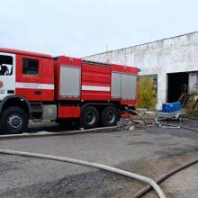 Oficialiai paskelbta gaisro Alytuje lokalizacija – jis pilnai suvaldytas