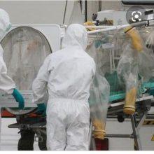 Londono lietuvė – apie atsainų požiūrį: mus vadina avių banda, išsigandusia gripo
