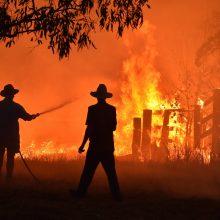 Australijoje gesinant gamtinį gaisrą sudužo sraigtasparnis, pilotas sužeistas