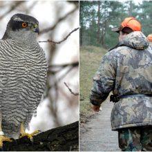 Į Raudonąją knygą įrašytą paukštį nužudę asmenys sulaukė atpildo: skirtos baudos