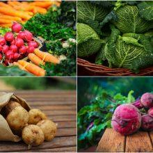 Specialisto patarimai: šviežios daržovės – ir maistas, ir vaistas