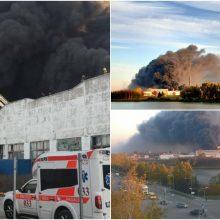 Milžiniško gaisro Alytuje žala gamtai gali siekti penkis milijonus eurų