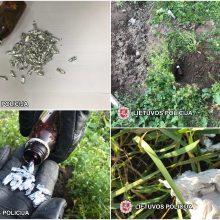 Romų tabore sulaikyta policijai gerai žinoma nėščia narkotikų prekeivė
