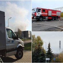 Gaisro Alytuje padariniai: ar oro užterštumas kelia pavojų žmonių sveikatai?