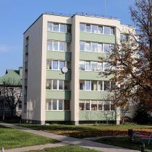 Daugiabučių renovacijai skiria dar 150 mln. eurų