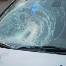Varėnos rajone automobilis partrenkė penkerių metų vaiką