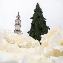 Kauno Kalėdų eglės kūrėja pažadėjo: sniego turėsime – saldaus ir cukrinio
