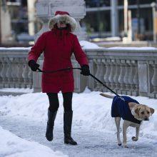 JAV šią savaitę prognozuojami šalčio rekordai