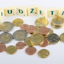 Seimo Kultūros komitetas pritarė kitų metų valstybės biudžeto projektui